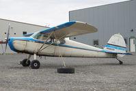 N3903V @ LHD - Cessna 170 - by Dietmar Schreiber - VAP