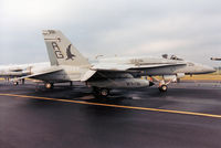 162867 @ EGDM - F/A-18A Hornet of VFA-136 aboard USS Dwight D Eisenhower on display at the 1990 Boscombe Down Battle of Britain 50th Anniversary Airshow. - by Peter Nicholson