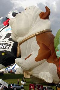 G-CDOG - 2003 Lindstrand Balloons Ltd LBL DOG, c/n: 938 in the guise of the popular Churchill Insurance Dog
