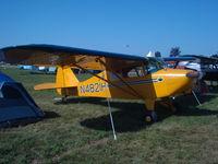 N4821H @ KOSH - Piper PA-17