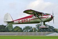 G-BRDJ @ EGBK - 1946 Luscombe Airplane Corporation LUSCOMBE 8F, c/n: 3411 at 2010 LAA National Rally