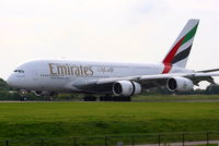 A6-EDI photo, click to enlarge