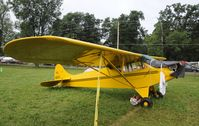 N19252 @ KOSH - EAA AIRVENTURE 2010