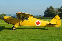 N203SA @ EGKH - SHOT AT HEADCORN - by Martin Browne