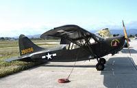 N1252 @ KWVI - 1942 Stinson L-5 USAAC cs 42-98196 Lookin Fer Trouble nose art @ Watsonville, CA - by Steve Nation