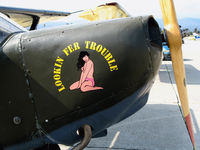N1252 @ KWVI - Close-up of nose art on 1942 Stinson L-5 USAAC cs 42-98196 Lookin Fer Trouble @ Watsonville, CA - by Steve Nation