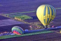 SU-275 - Egyptian Balloons over Luxor West Bank SU-275