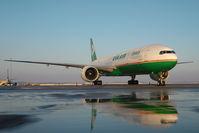 B-16712 @ LOWW - Eva Air Boeing 777-300 - reflection