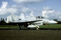 C15-22 @ EHLW - At the 1990 open house the Spanish Hornet was parked on the old 'German Runway'. - by Joop de Groot