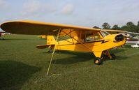 N1506N @ KLAL - Piper J3C-65 - by Mark Pasqualino
