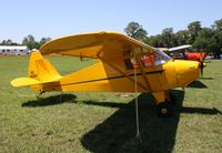 N4681H @ KLAL - Piper PA-17