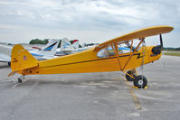 N40821 @ GIF - 1941 Piper J3C-65, c/n: 7523