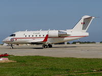 144618 @ LMML - Canadair C144 144618 Canadian Armed Forces - by raymond