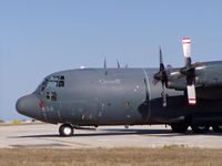 130334 @ LMML - CC130 130334 Canadian Armed Forces - by raymond