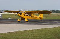 N28001 @ LAL - Piper Cub