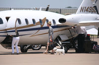 N149SL @ AFW - Puppy dog gets an airplane ride! At Alliance Airport - Fort Worth, TX