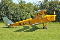 G-ANEM - 1940 De Havilland DH82A TIGER MOTH, c/n: 82943 at Baxterley