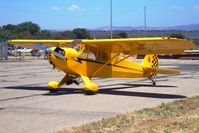 N77524 @ KLPC - On display at the Lompoc Piper Cub Fly in - by Nick Taylor Photography