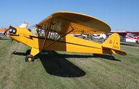 N70379 @ C55 - Piper J3C-65 - by Mark Pasqualino