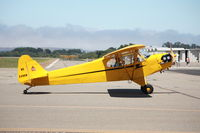 N3496N @ KLPC - Lompoc Piper Cub Fly-in 2011 - by Nick Taylor Photography