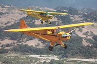 N42144 @ KLPC - Lompoc Piper Cub Fly-in 2011 - by Nick Taylor Photography