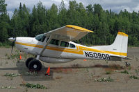 N5090R @ UUO - A good little field is Willow - by Duncan Kirk