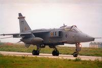 XZ115 @ LMML - Jaguar GR1 XZ115/PD 16Sqd RAF - by raymond
