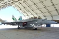 166791 @ KNJK - Boeing F/A-18F Super Hornet of the US Navy at the 2011 airshow at El Centro NAS, CA - by Ingo Warnecke