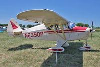 N2390P @ OSH - 1955 Piper PA-22-150, c/n: 22-2781 at 2011 Oshkosh