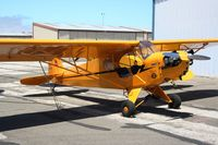 N42144 @ KLPC - Lompoc Piper Cub fly in 2011 - by Nick Taylor Photography