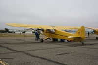 N30653 @ KLPC - Lompoc Piper Cub fly in 2011 - by Nick Taylor Photography