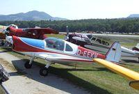 D-EEKW @ EDST - Benes-Mraz M.1C Sokol at the 2011 Hahnweide Fly-in, Kirchheim unter Teck airfield - by Ingo Warnecke