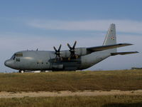 403 @ LMML - C130 Hercules 403 South African Air Force - by raymond