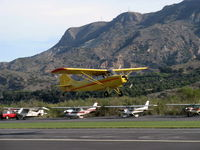N84171 @ SZP - 1946 Aeronca 7AC CHAMPION, Continental A&C65 65 Hp, takeoff climb Rwy 22 - by Doug Robertson