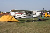 N481H @ LAL - Cessna 185