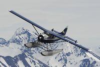 N9878R @ AIR TO AIR - Regal Air Dash 2 Otter - by Dietmar Schreiber - VAP