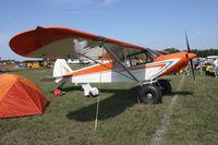 N1890A @ LAL - Piper PA-18