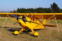 N77524 @ KLPC - Lompoc Piper Cub Fly-in 2006 - by Nick Taylor