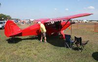 N5834H @ LAL - Piper PA-16