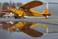N87804 @ PATK - Piper 12 - reflection