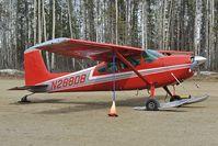 N288DB @ PAUO - Cessna 180
