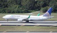 N76516 @ TPA - United Ecoskies 737-800