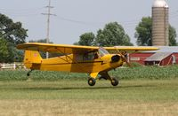 N70870 @ C77 - Piper J3C-65 - by Mark Pasqualino