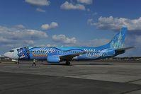 N706AS @ PAFA - Alaska Airlines Boeing 737-400