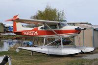 N9095M @ LHD - Cessna 180