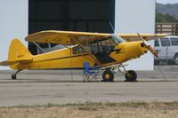 N10593 @ KLPC - Lompoc Piper Cub fly in 2012 First Arrival - by Nick Taylor