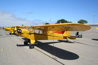 N7020H @ KLPC - Lompoc Piper Cub fly in 2012 - by Nick Taylor