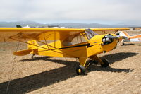 N26105 @ KLPC - Lompoc Piper Cub fly in 2012 - by Nick Taylor