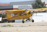 N48525 @ KLPC - Lompoc Piper Cub fly in 2012 - by Nick Taylor
