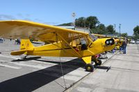 N3496N @ KLPC - Lompoc Piper Cub fly in 2010 - by Nick Taylor
